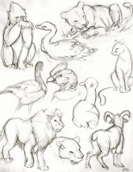Zoo Sketches 2015-06-23 by SPipes