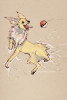 a jolteon