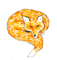 fox by beaulivres