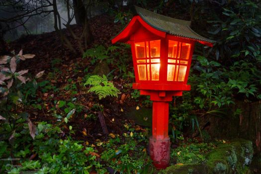 Lone Red Lamp by JKase911