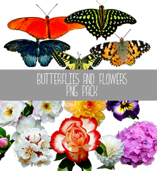 Butterflies and Flowers PNG by IrisFerrara