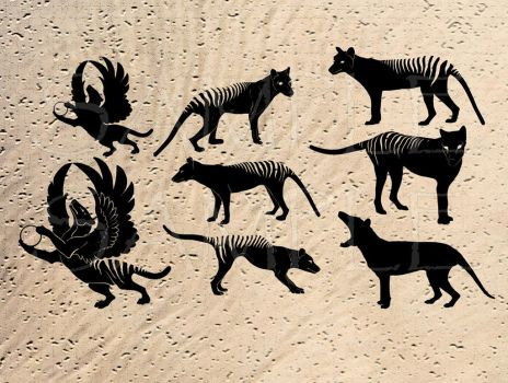 Thylacine clipart by hontor