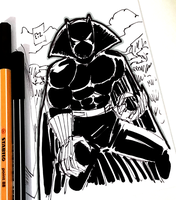 DSC 2017-08-22 Black Panther by theEyZmaster