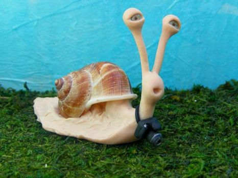 Photographer Snail by ColtPixy