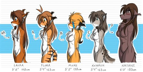 Twokinds Bust Size Chart by Twokinds
