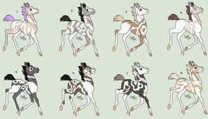 # NYP-Adoptables - Foals 2 - OPEN [1/8] by PinkPlushChicken