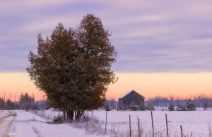 Winter Pastel Colours by Nini1965