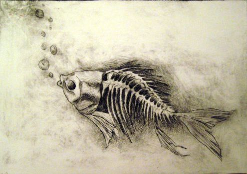 skeleton fish print by this-blue-moon