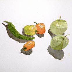 peppers by paterick16kermit