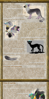 Trico - Master Reference Sheet [updated!] by TheMiles