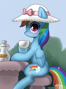 Tea Party Dashie by johnjoseco