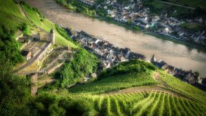 Mosel Impressions [11 of 12] by 00Michael00A