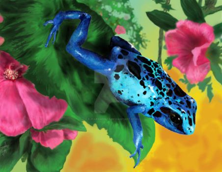 Blue Poison Dart Frog 1 by rjparamonte