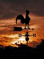 Sunset Silhouette by DarthIndy