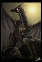 ::Dragon Tamer:: by sangheili117