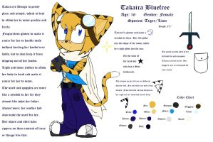 Takaira Design Reference by SonicHearts