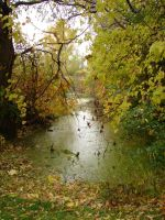 Fall Background Landscape 4 by FantasyStock