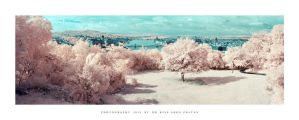 Budapest - IR IV by DimensionSeven