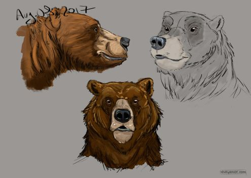Bear-front by Chayemor