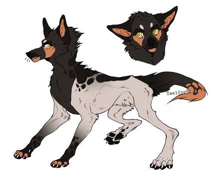 Adopt SOLD by Dogrre