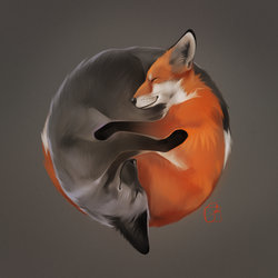 foxes by GaudiBuendia
