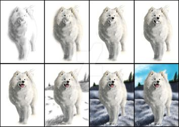 samoyed tutorial by bubumo