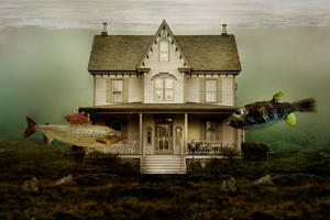 This House is not a Home by sylview