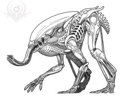 Amphibian Alien by scorpenomorph