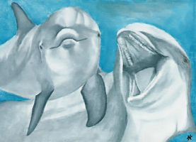 Dolphins - ACEO by Sofera