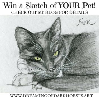 Win a Sketch of YOUR Pet! by DreamingofDarkhorses