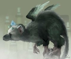 The Last Trico by IrukenRina