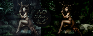 PSD Amazon Dark Coloring by Andro by Andro1990