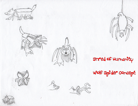 SoH Concept - Wolf Spider by DracianFlame