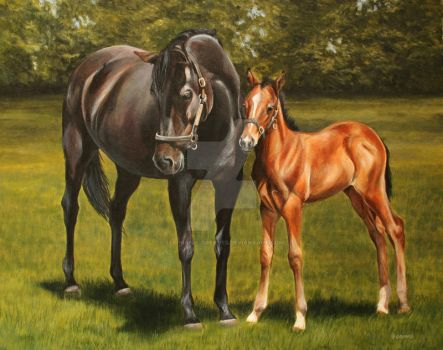 Mare and Foal at stud by Stephanie-Greaves