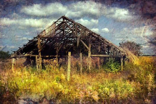 Old barn by Louisolah