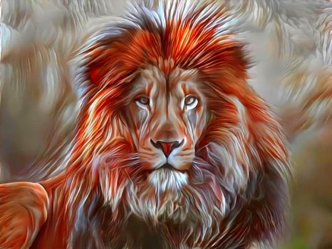 A Lion does not turn around  when a small dog bark by eReSaW