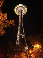 Seattle Space Needle At Night by Endaewen