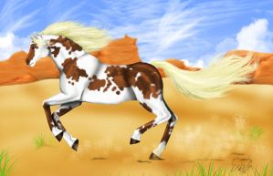 -Paint horse- by odduckoasis