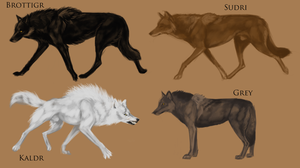 Dire Wolf Subspecies by TheSodaSmuggler