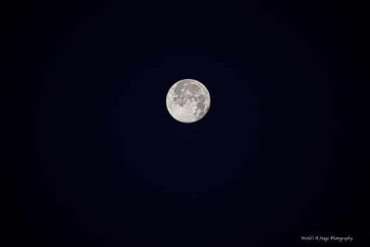 Strawberry Moon 6/21/2016 by tl3319