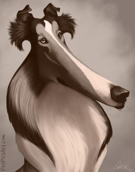 Lassie Caricature by CharReed
