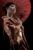 FLYiNG GeiSHa by rama17wardana