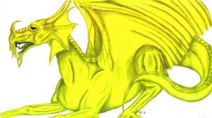 Yellow dragon by Skychaser