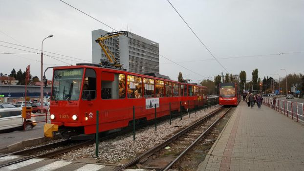 Trams at Molecova by 15miki15