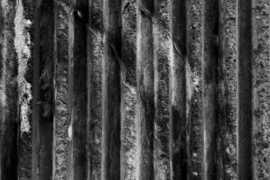 tactile density and striated light by chriseastmids
