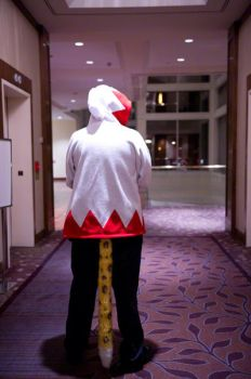 White Mage at Anthrocon 2011 by GizaWhiteMage