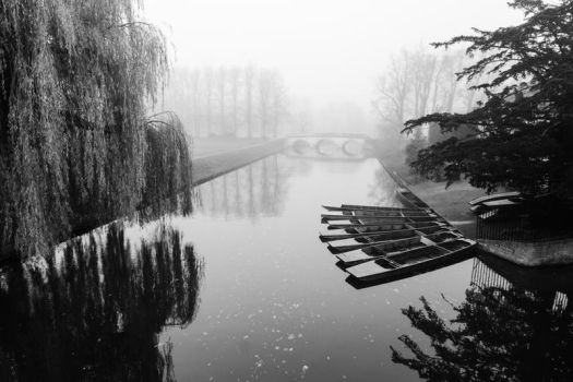 Foggy Morning In Cambridge II (BW) by torobala