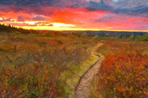 Twilight Oil Impressions of Dolly Sods by somadjinn