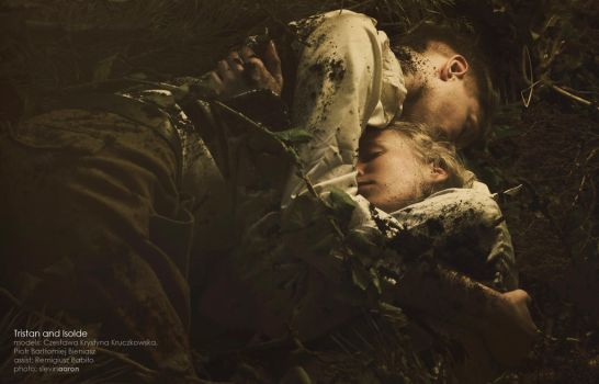 Tristan and Isolde VII by SlevinAaron