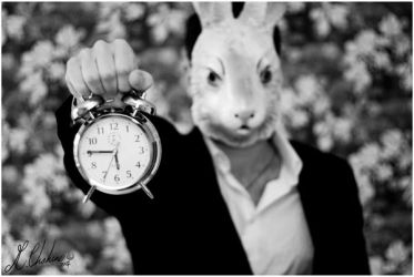 Ticking Rabbit by mchahine
